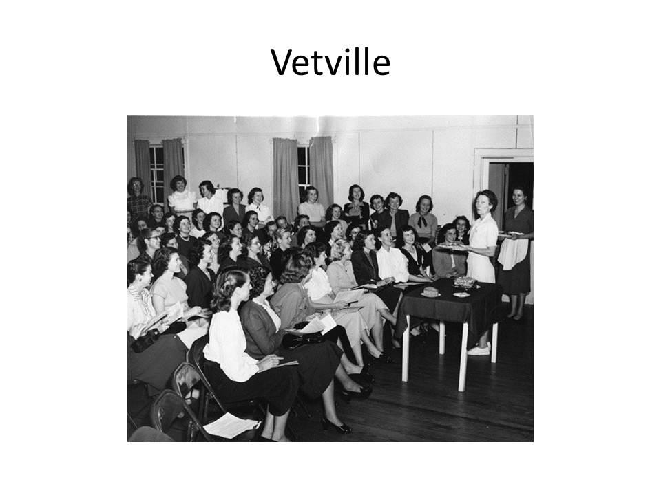 slide-11-vetville-slide-11