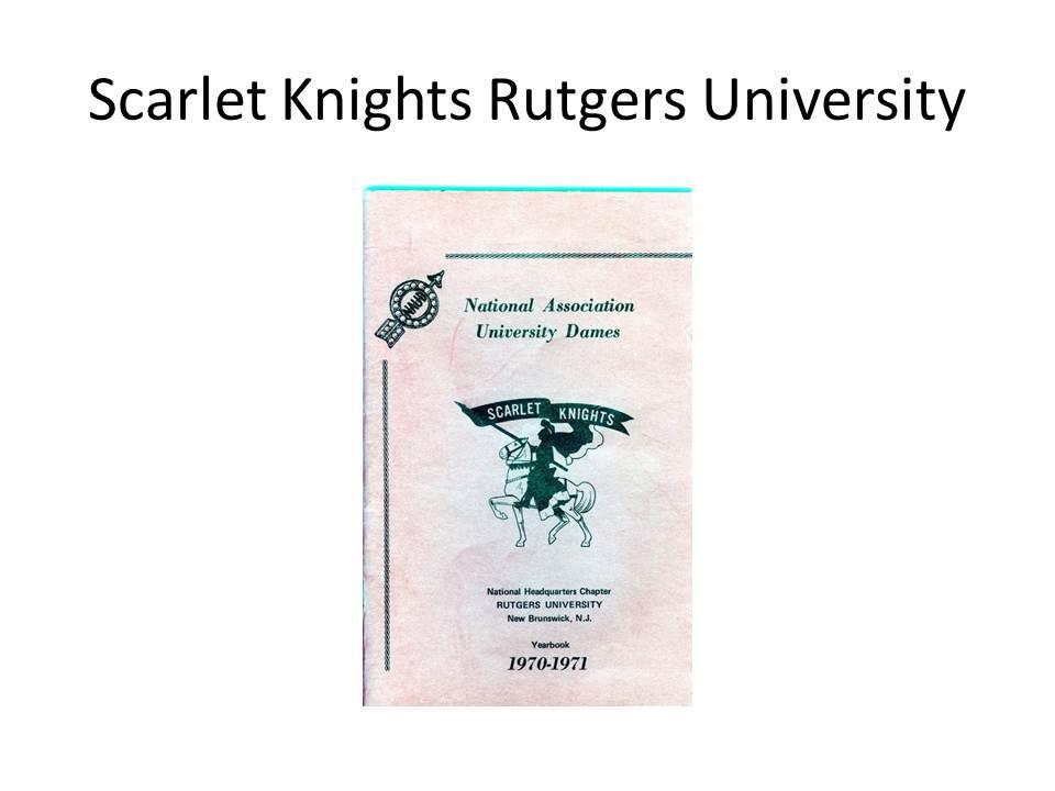 slide-8-scarlett-knights-slide-8